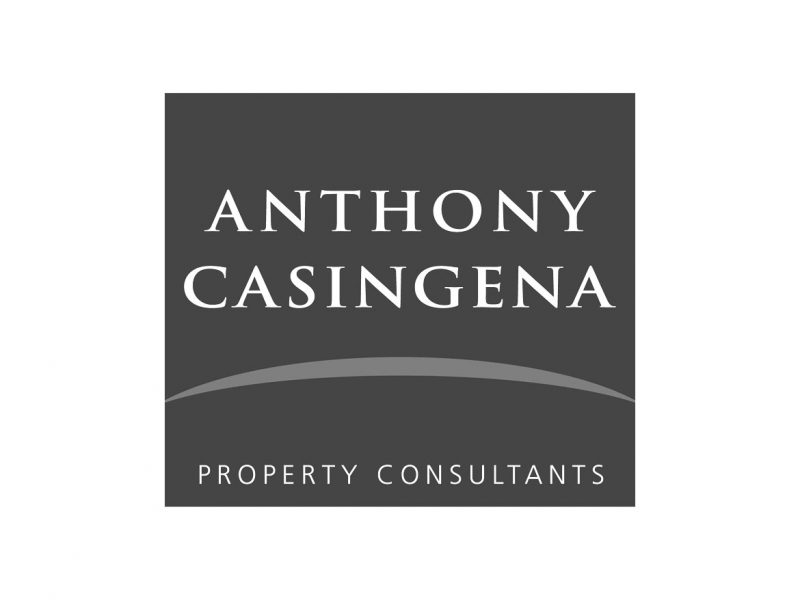 Anthony Casingena Logo Design