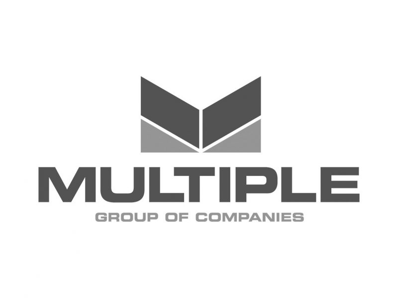 Multiple Group of Companies Logo Design