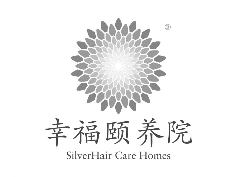 SilverHair Care Homes Logo Design