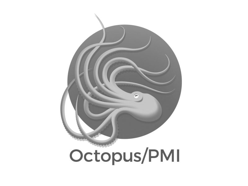 Octopus PMI Logo Design