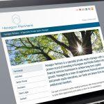 Hexagon Partners Website Design